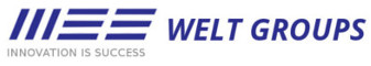 Welt Groups Logo